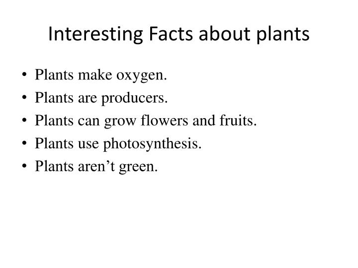 Interesting Facts about plants