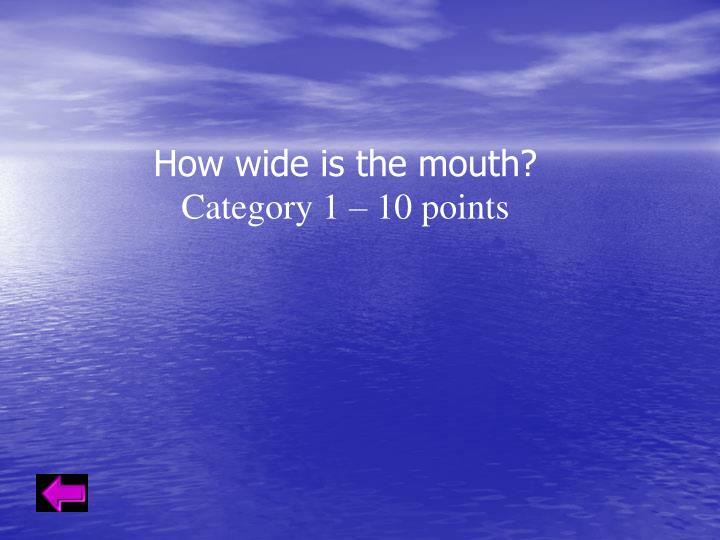 How wide is the mouth?