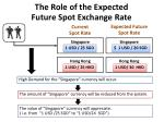 the role of the expected future spot exchange rate