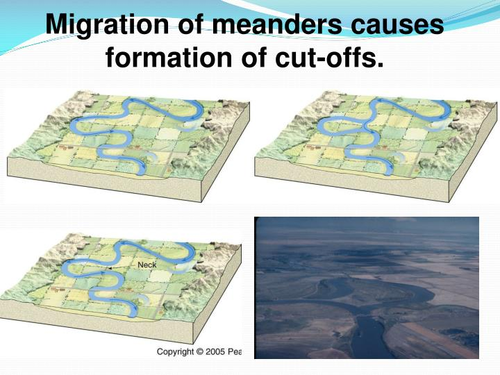 Migration of meanders causes formation of cut-offs.