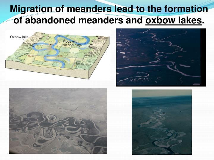 Migration of meanders
