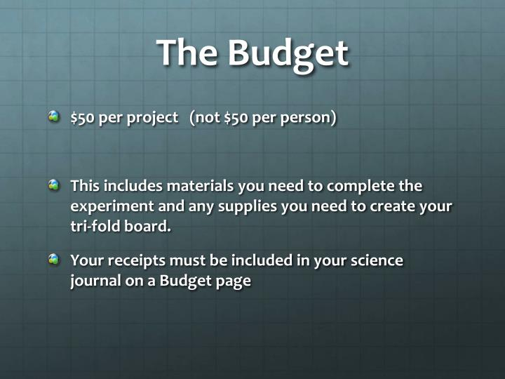 The Budget