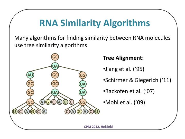 RNA Similarity Algorithms