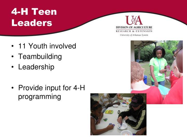 4-H Teen Leaders