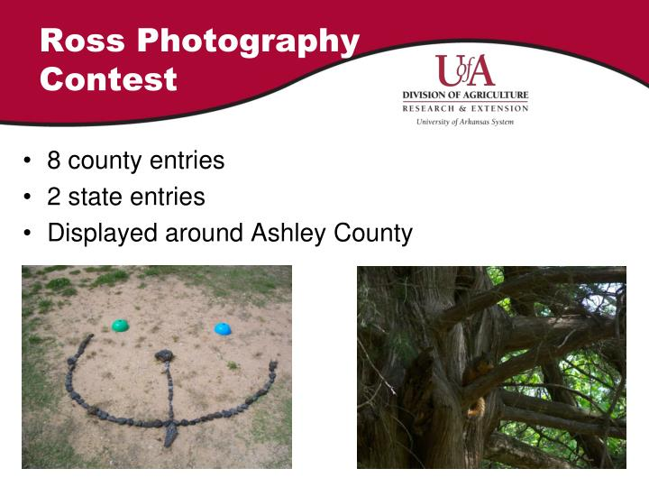 Ross Photography Contest