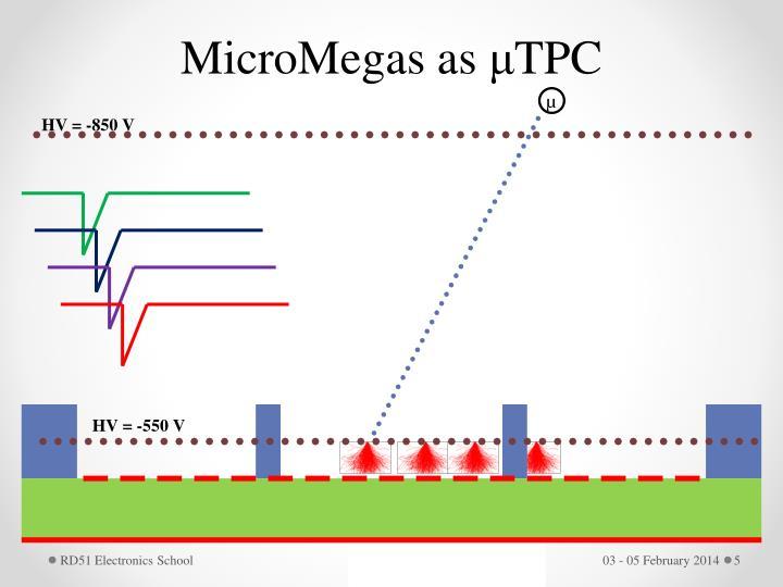 MicroMegas as