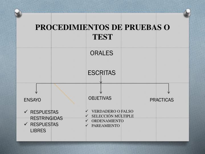PROCEDIMIENTOS DE PRUEBAS O TEST