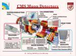 cms muon detectors