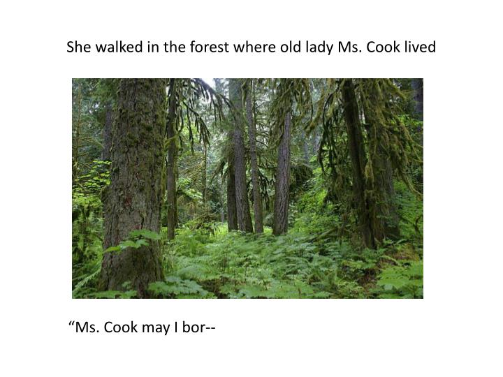 She walked in the forest where old lady Ms. Cook lived