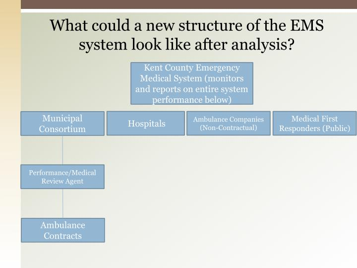 What could a new structure of the EMS system look like after analysis?