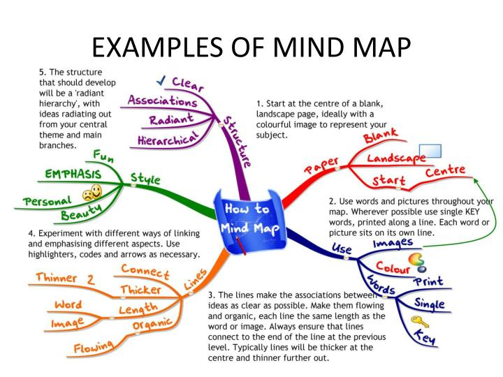 EXAMPLES OF MIND MAP