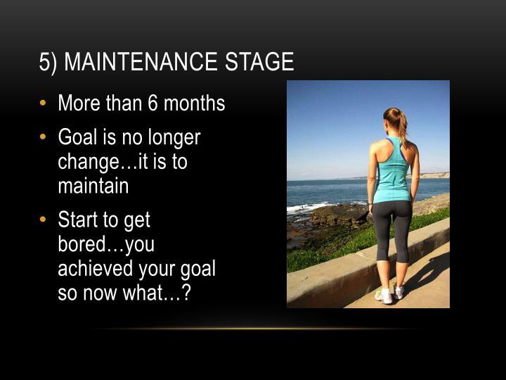 5) Maintenance Stage