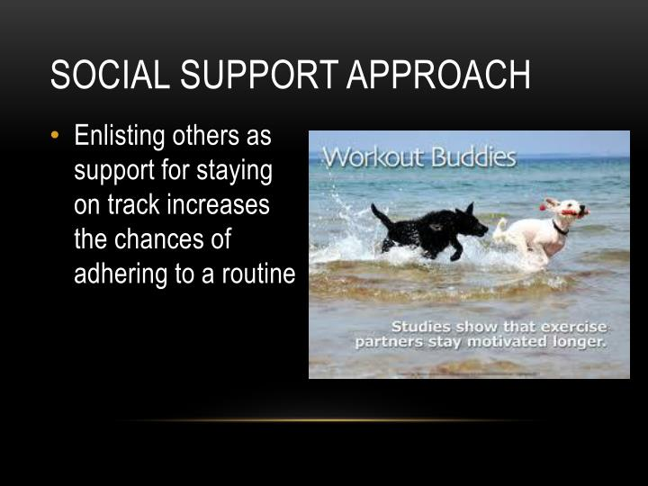 Social support approach