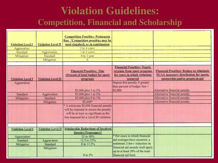 Violation Guidelines: