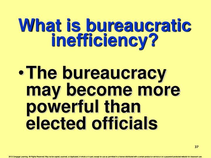 What is bureaucratic inefficiency?