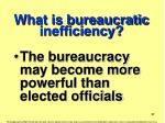 what is bureaucratic inefficiency