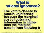 what is rational ignorance