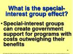 what is the special interest group effect