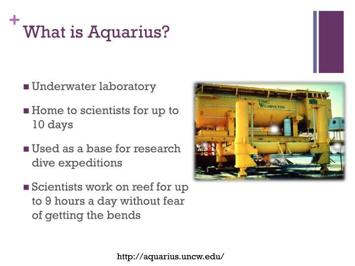 What is Aquarius?