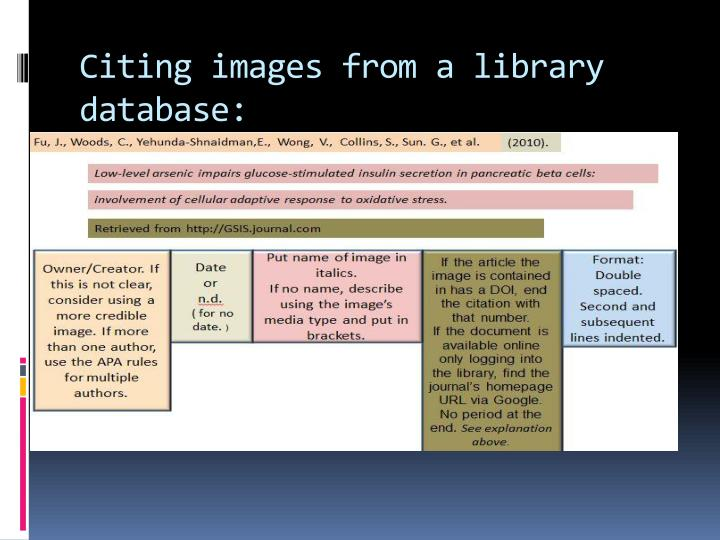 Citing images from a library database: