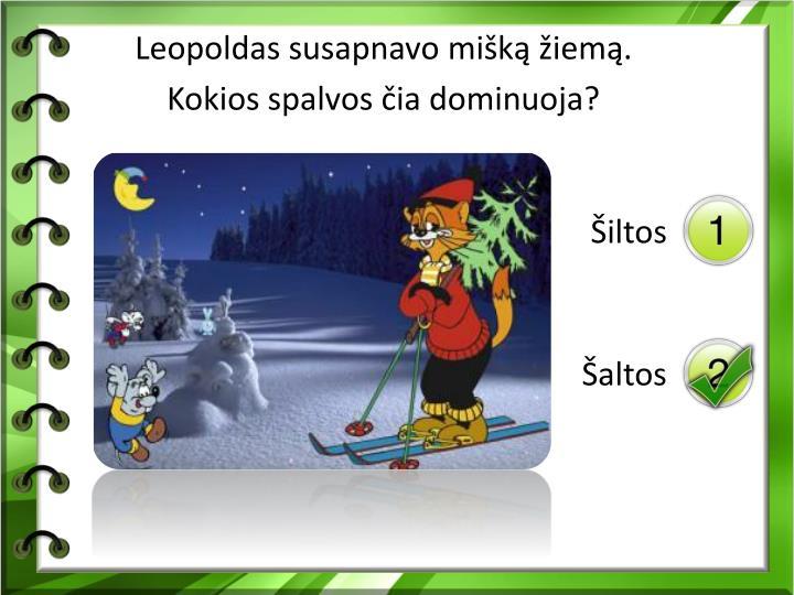 Leopoldas susapnavo mišką žiemą