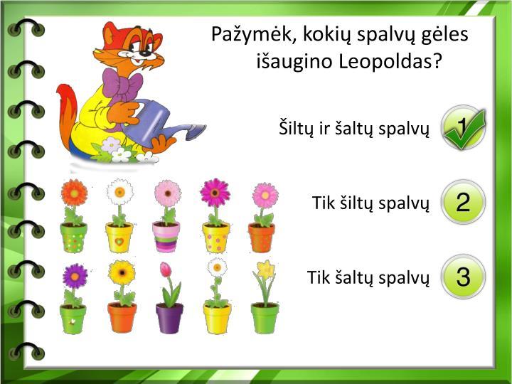 Pažymėk, kokių spalvų gėles išaugino Leopoldas?