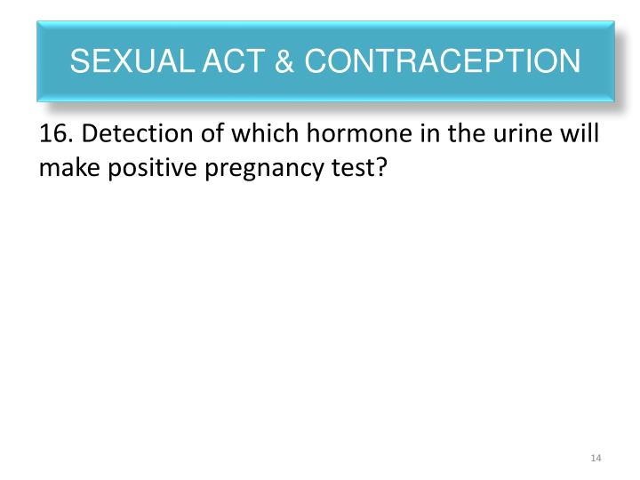 Sexual act & contraception