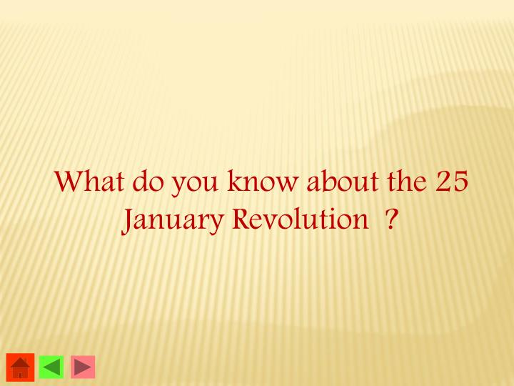 What do you know about the 25 January Revolution  ?