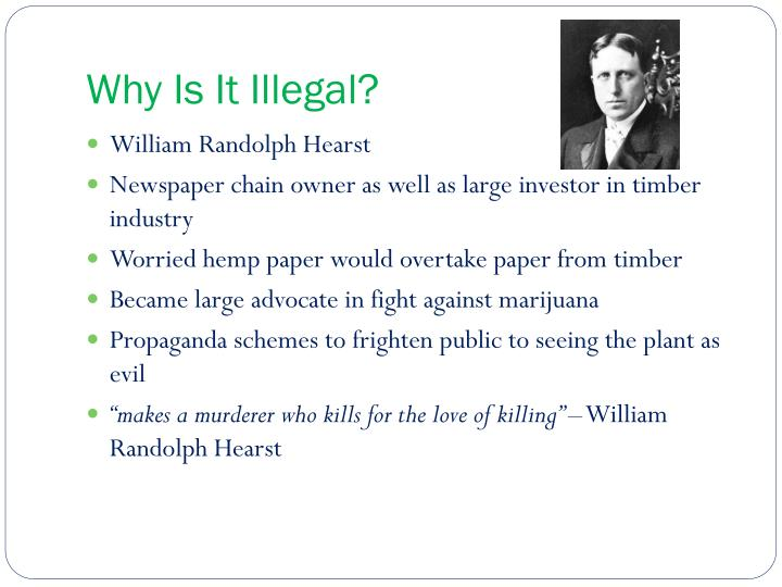 Why Is It Illegal?