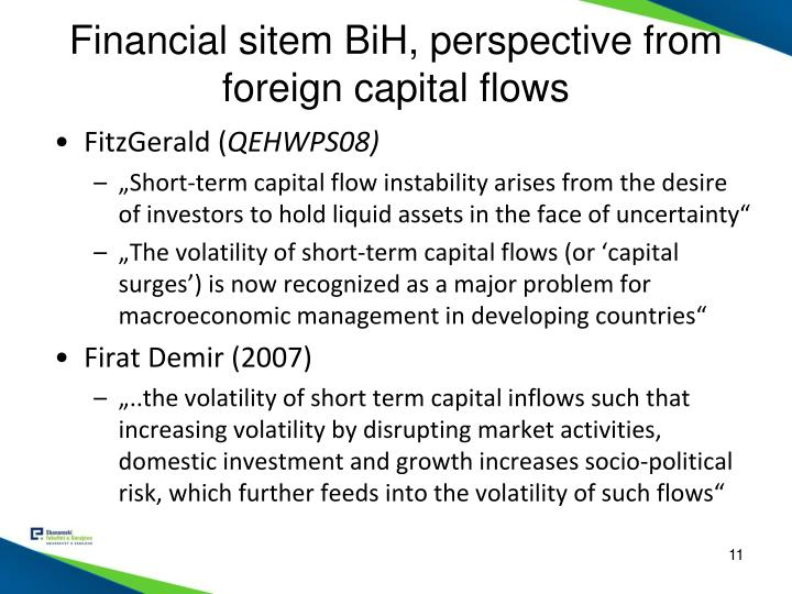 Financial sitem BiH, perspective from foreign capital flows