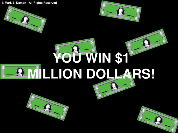 YOU WIN $1 MILLION DOLLARS!