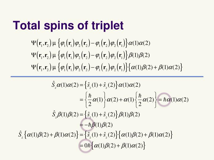 Total spins of triplet