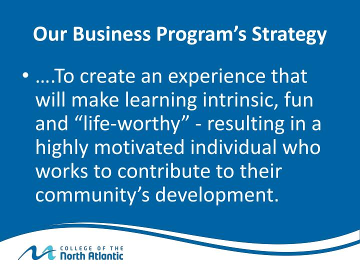 Our Business Program's Strategy