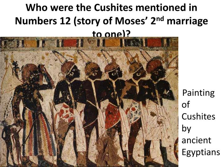 Who were the Cushites mentioned in Numbers 12 (story of Moses' 2