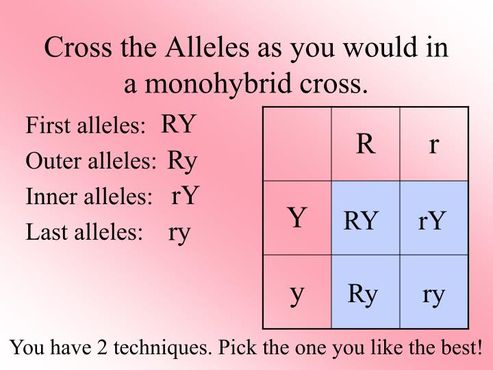 Cross the Alleles as you would in a monohybrid cross.