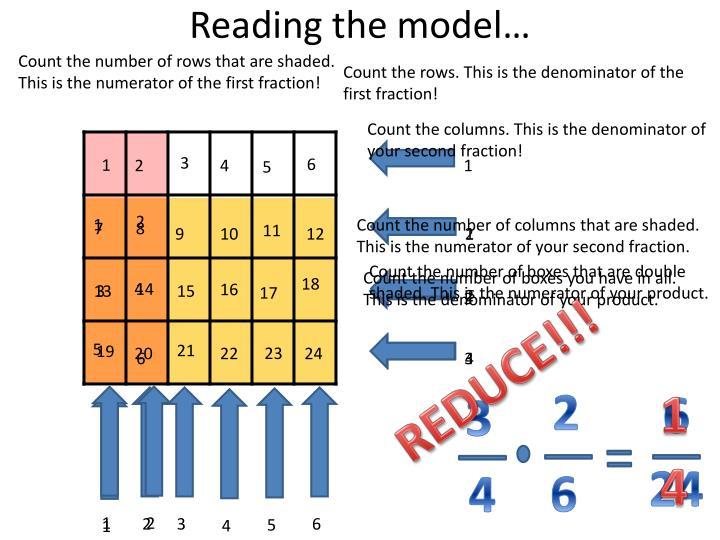 Reading the model…
