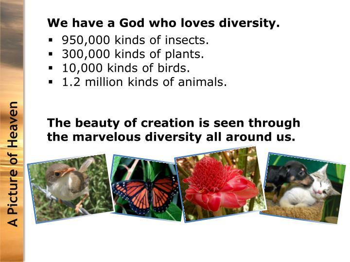 We have a God who loves diversity.