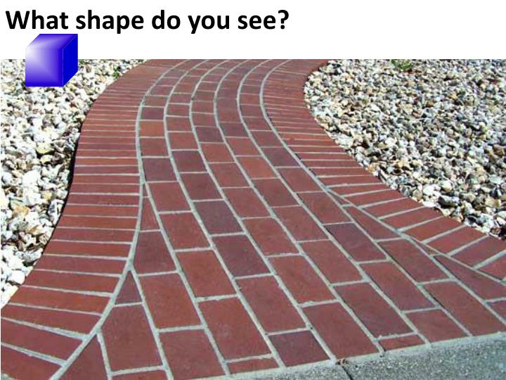 What shape do you see?