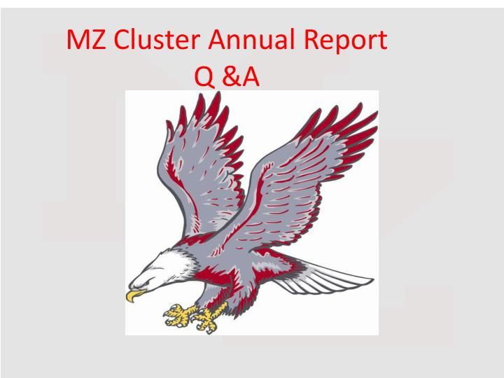 MZ Cluster Annual Report