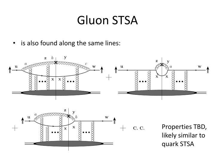 Gluon STSA