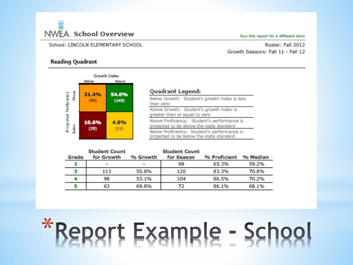 Report Example - School