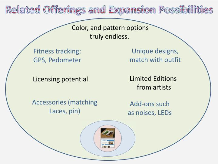 Related Offerings and Expansion Possibilities