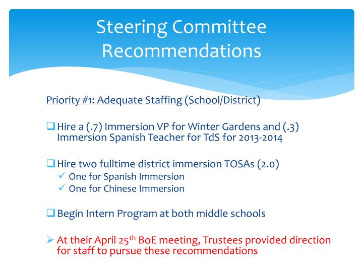 Steering Committee Recommendations