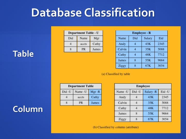 Database Classification