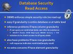 database security read access