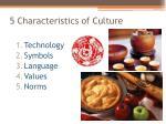 5 characteristics of culture1