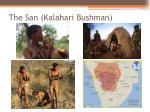 the san kalahari bushman