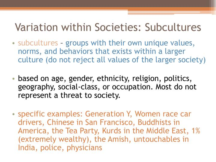 Variation within Societies: Subcultures