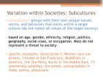 variation within societies subcultures