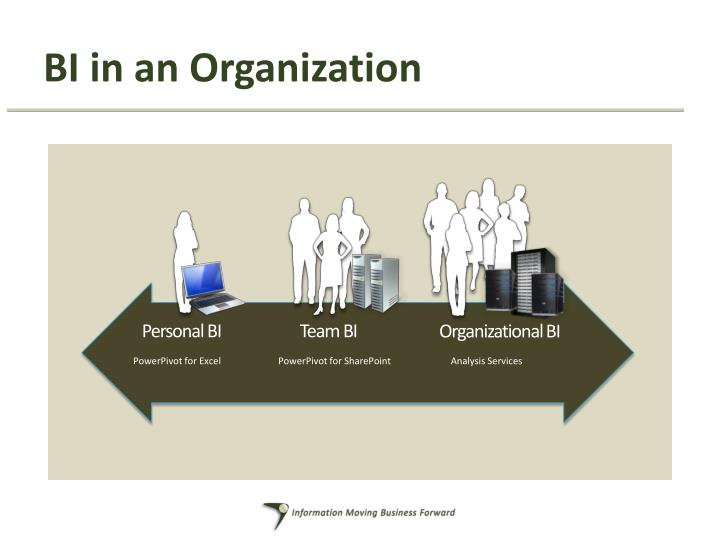 BI in an Organization